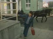 http//images.vfl.ru/ii/15473985/7440c560/230504.jpg