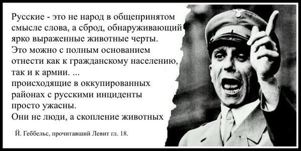 http://images.vfl.ru/ii/1547407776/d78f0175/24940150_m.jpg