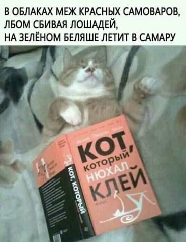 http://images.vfl.ru/ii/1547789397/cea41271/24999537_m.jpg