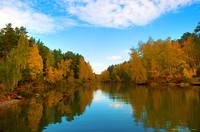 http://images.vfl.ru/ii/1548473888/5823a98b/25112503_s.jpg