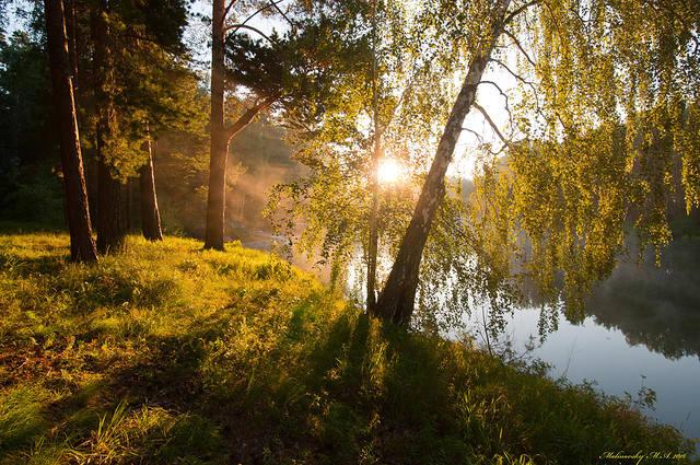 http://images.vfl.ru/ii/1548474117/4098c4a3/25112534_m.jpg