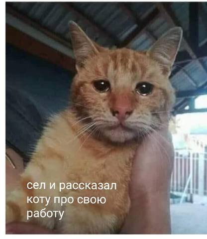 http://images.vfl.ru/ii/1549705500/f0f5a97e/25319015_m.jpg
