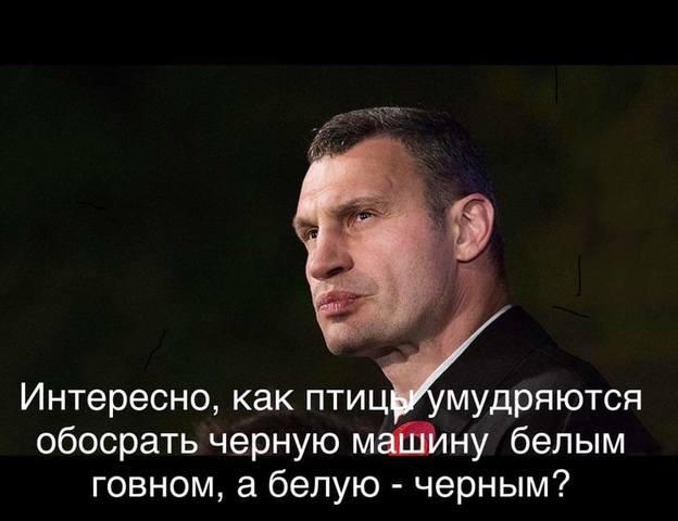 http://images.vfl.ru/ii/1549732918/6bddfbfd/25324541_m.jpg