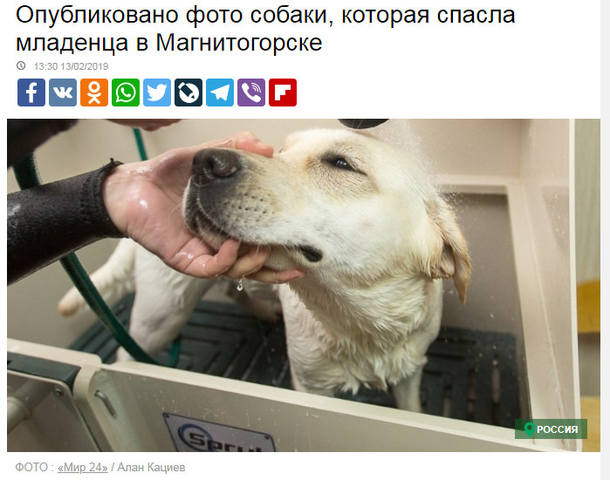 http://images.vfl.ru/ii/1550059151/e516ea43/25374141_m.jpg