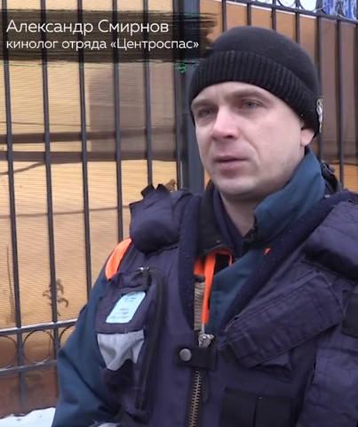 http://images.vfl.ru/ii/1550060256/0068db9d/25374423_m.jpg