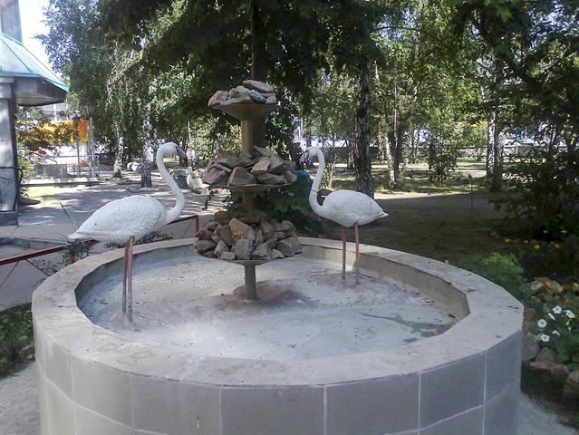 http://images.vfl.ru/ii/1550600860/c87dad69/25466224_m.jpg