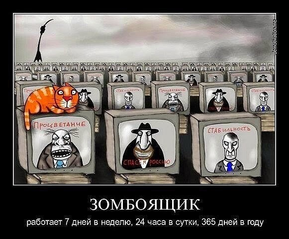 http://images.vfl.ru/ii/1551023545/f5503ba2/25527167.jpg