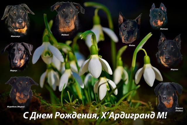 http://images.vfl.ru/ii/1552210523/6f2603be/25703180_m.jpg