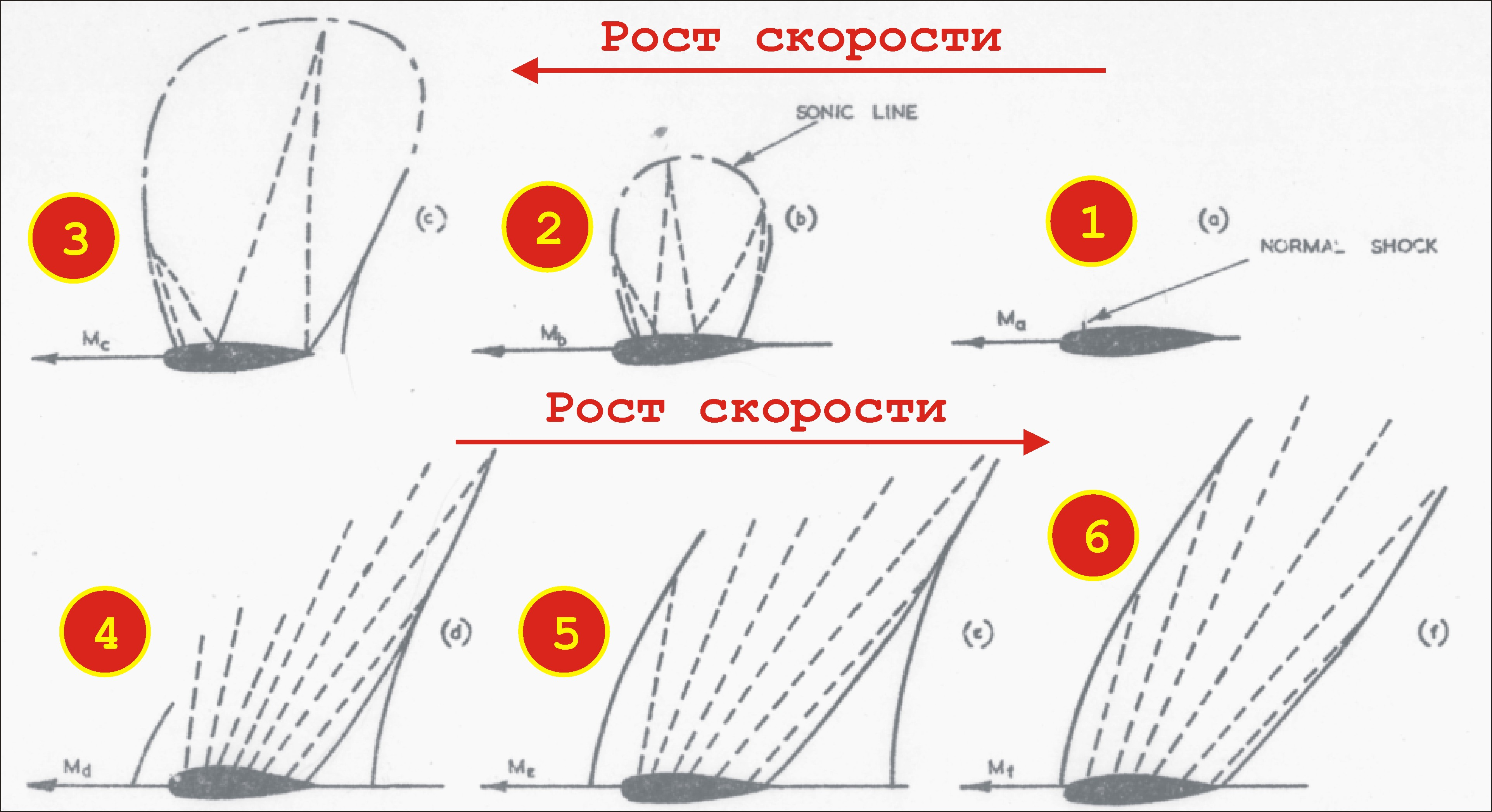 http://images.vfl.ru/ii/1552400869/aefa10a6/25737220.jpg