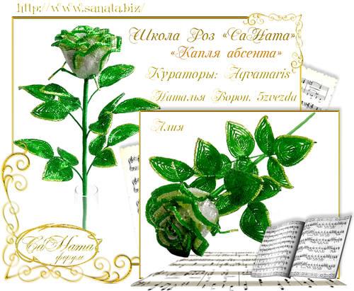 Выпуск Школы роз. курс - Капля абсента 25751757_m