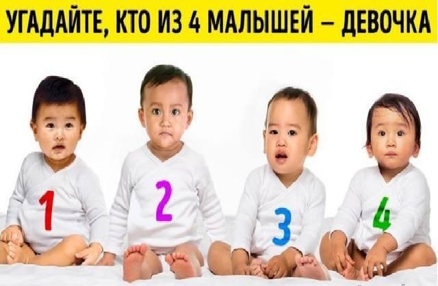 Психологический Тест:   Кто из 4 Малышей — Девочка? 25761415_m