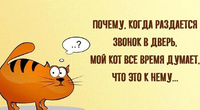 http://images.vfl.ru/ii/1552739034/8539d456/25786590_m.jpg