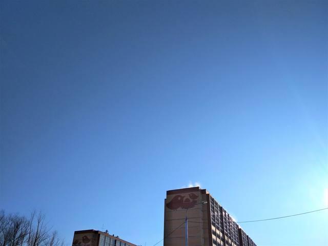 http://images.vfl.ru/ii/1553354670/526e80b0/25888762_m.jpg