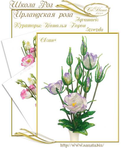 Выпуск Школы роз. курс - Ирландская роза 25942140_m