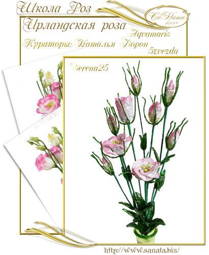 Выпуск Школы роз. курс - Ирландская роза 25942141_m