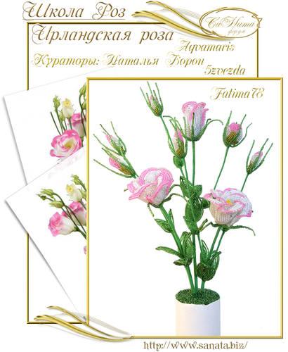Выпуск Школы роз. курс - Ирландская роза 25942138_m