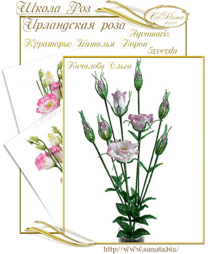 Выпуск Школы роз. курс - Ирландская роза 25942149_m
