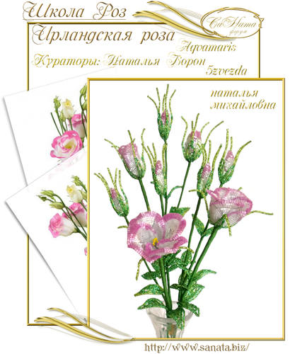 Выпуск Школы роз. курс - Ирландская роза 25942150_m