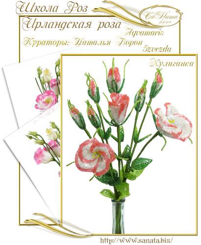 Выпуск Школы роз. курс - Ирландская роза 25942154_m