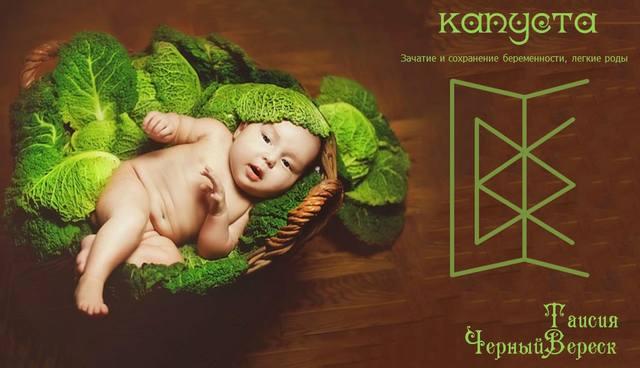 КАПУСТА (зачатие и сохранение беременности) Автор Таисия ЧерныйВереск 26214274_m
