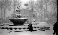 http://images.vfl.ru/ii/1556052186/7555840f/26297919_s.jpg