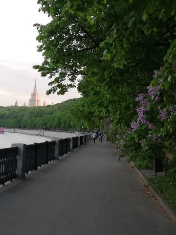 Москва златоглавая... - Страница 24 26521041_m