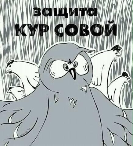 http://images.vfl.ru/ii/1558421861/3192d9e1/26606067_m.jpg