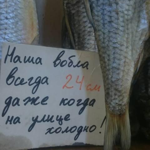 http://images.vfl.ru/ii/1558931517/36e3aec7/26672626_m.jpg