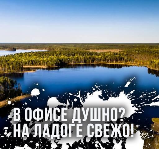 http://images.vfl.ru/ii/1559117301/4a6ccd43/26697493_m.jpg