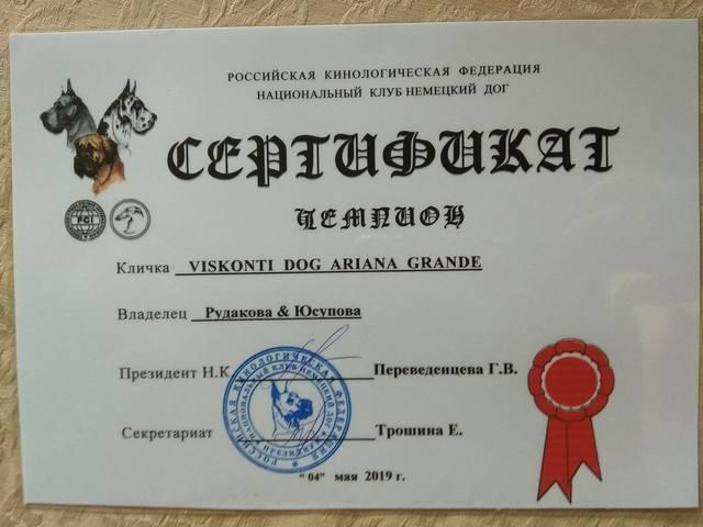 http://images.vfl.ru/ii/1559653049/56f50a84/26772766_m.jpg