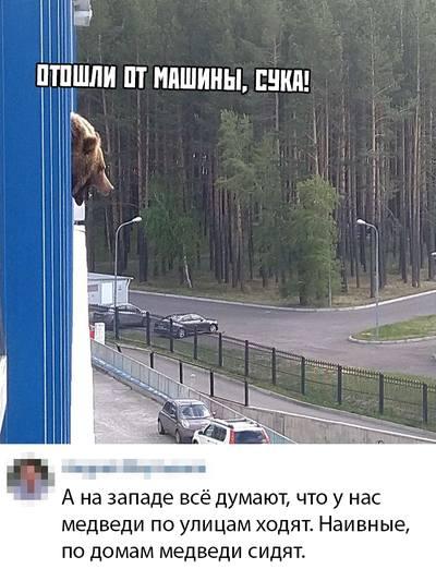 http://images.vfl.ru/ii/1559757599/efa6a865/26789758_m.jpg