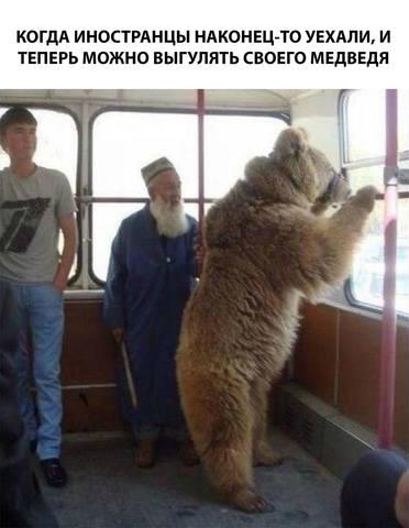 http://images.vfl.ru/ii/1559770948/78469539/26791765_m.jpg