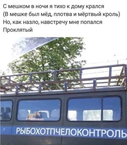 http://images.vfl.ru/ii/1560632354/d13371a0/26899407_m.jpg