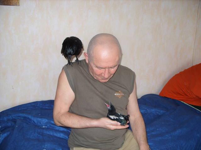 http://images.vfl.ru/ii/1560948186/12b986e6/26938541_m.jpg