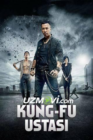 Kung fu ustasi