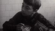 http//images.vfl.ru/ii/1562393916/07e294/271182.jpg
