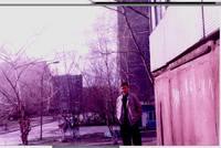 http://images.vfl.ru/ii/1562564019/ff554fb2/27137640_s.jpg