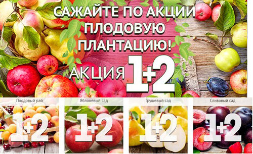 Промокод Беккер. Плодовые деревья 1+2!