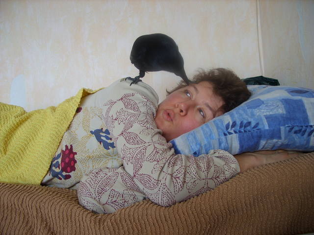 http://images.vfl.ru/ii/1563877144/42a24471/27303774_m.jpg
