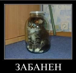 http://images.vfl.ru/ii/1563910840/4afb4df6/27310359_m.jpg