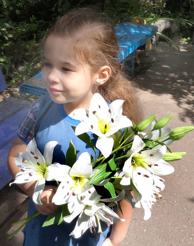 http://images.vfl.ru/ii/1565436056/77fabf25/27497333_m.jpg