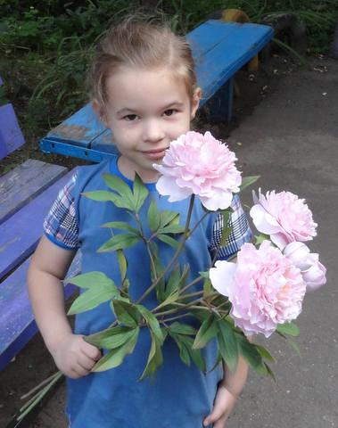 http://images.vfl.ru/ii/1565436057/1fac0ba2/27497334_m.jpg
