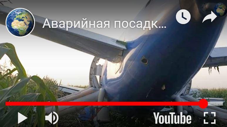 http://images.vfl.ru/ii/1565984920/bd7d3773/27564211.jpg