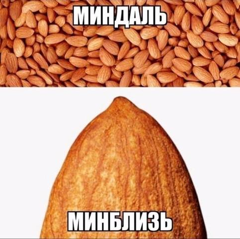 http://images.vfl.ru/ii/1566480665/5e1a1724/27621819_m.jpg