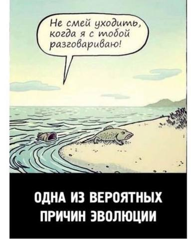 http://images.vfl.ru/ii/1566487234/23b07493/27623304_m.jpg