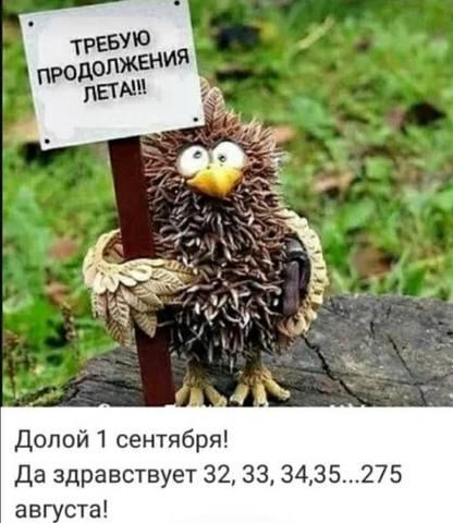 27703136_m.jpg
