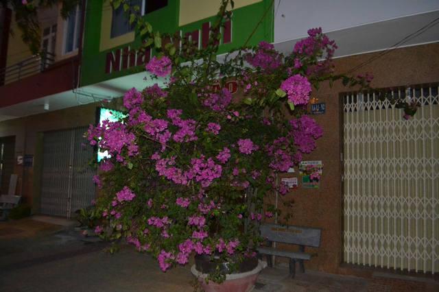 http://images.vfl.ru/ii/1567253240/597ad822/27717349_m.jpg