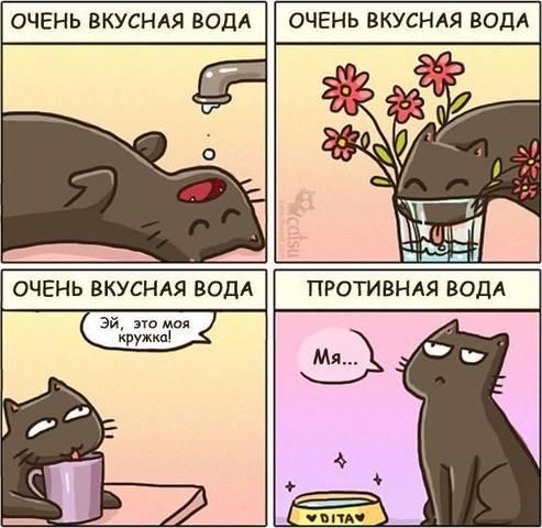 http://images.vfl.ru/ii/1567454948/112cb2de/27741419_m.jpg