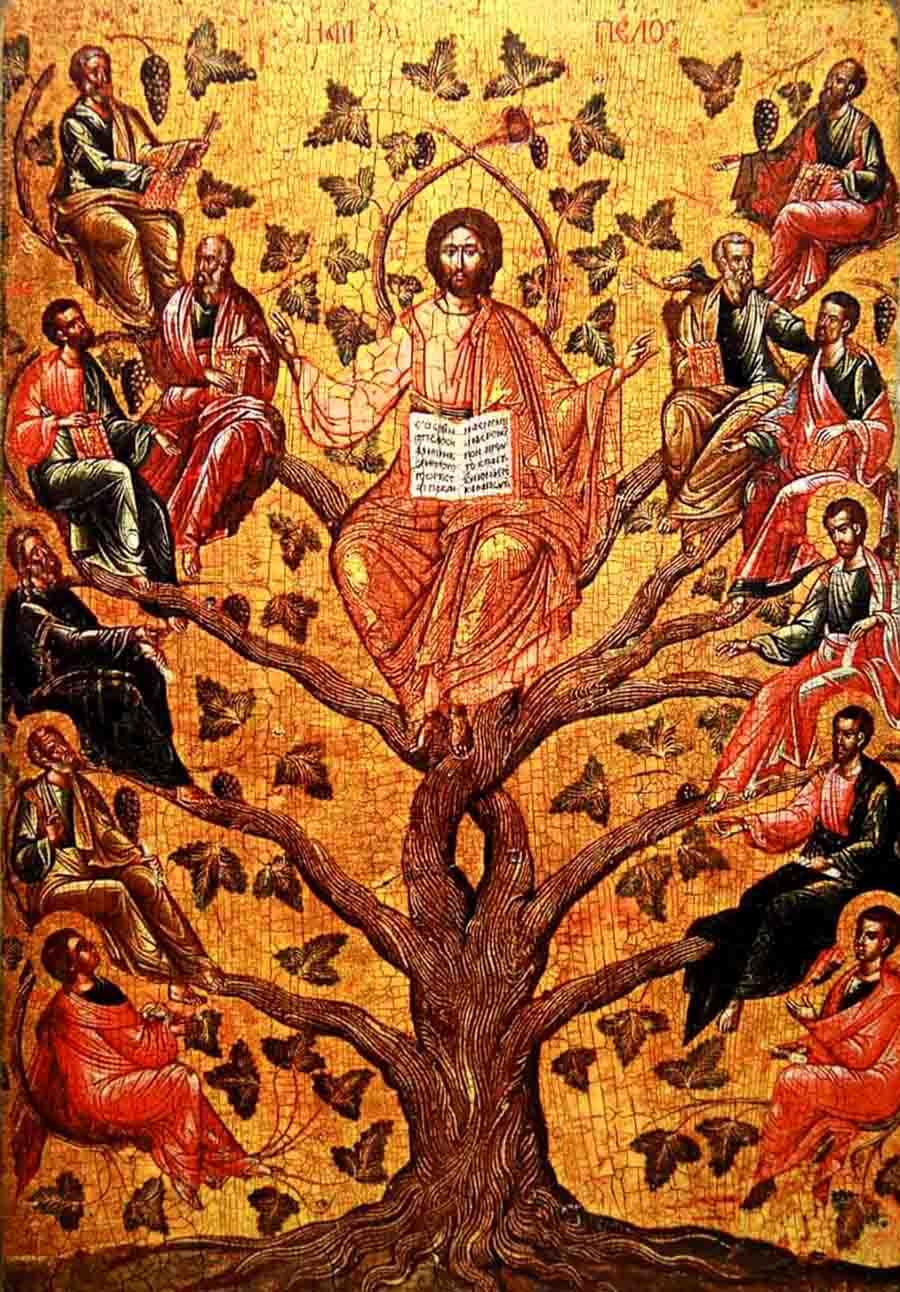 ხე სიცოცხლისა
