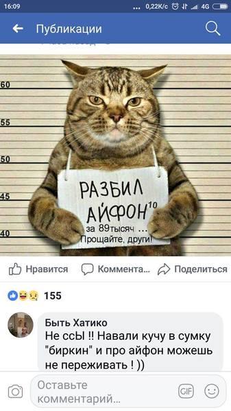 http://images.vfl.ru/ii/1567655357/b5959a6e/27763605.jpg